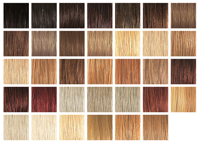 Brown Hair Shades Color Chart Dark Brown Hairs Of Hair