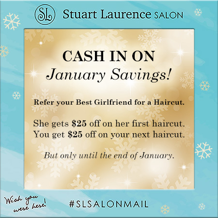 Stuart Laurence Salon
